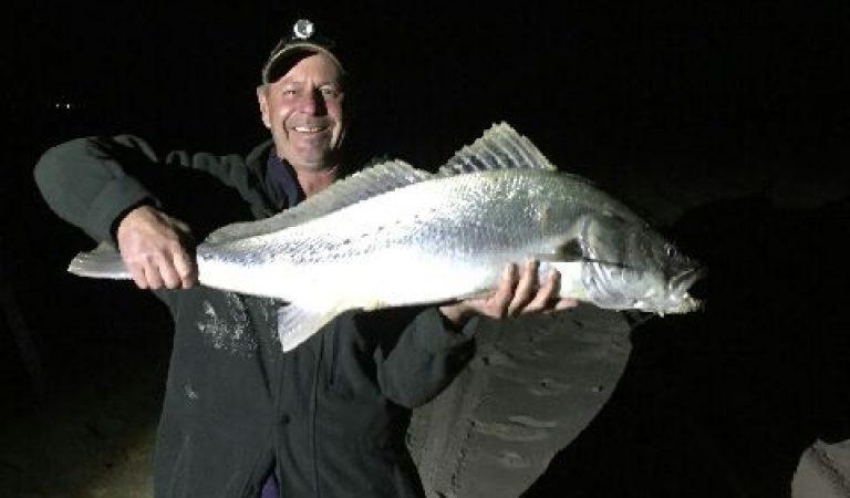 About UFISH Brined Baits - Fishing Bait Shop Newcastle